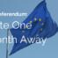 EU Referendum_(6)